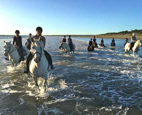 Camping les Quatre Vents - Pays de Retz - Loire-Atlantique - nautisme - cheval - centre equestre - randonnées - activités - saint-brevin - enfants - famille - loisirs