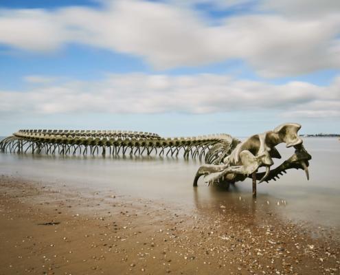 Camping les Quatre Vents - Pays de Retz - Loire-Atlantique - saint-brevin - Serpent de mer - structure - plage - mer - activites